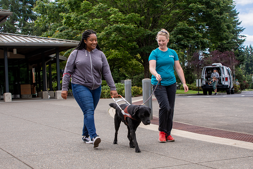 adolescent girl walking with harness and instructor walking with leash of a black lab